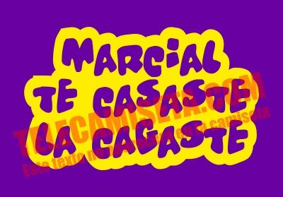 Te Casaste La Cagaste